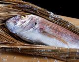 「真鯛の濱焼き(養殖)」 1.7〜1.8kg ※冷蔵