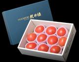 北海道産フルーツトマト 『北の極』 プレミアム9〜13玉 700g以上 ※冷蔵