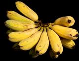 荘司さんが作る 沖縄県産 アップルバナナ 1.5kg(1〜2房) ※常温