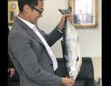 超特大「時鮭」 魚体 約3.5kg 1尾 冷凍