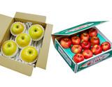 『究極の蜜入りりんごセット』 こみつ 秀A品 約2kg & こうこう 約2kg(5〜8玉) ※常温