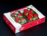 佐賀県産 「いちごさん」 1箱:約240g 大粒 5〜7粒×2パック ※冷蔵