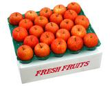 訳あり『サンふじリンゴ』 小玉 約5kg(23〜25玉)青森県産