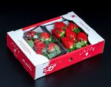 【朝日マリオン】佐賀県産 「いちごさん」 1箱:約240g 大粒 5〜7粒×2パック ※冷蔵