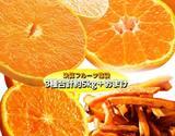 【朝日マリオン】決算特別!柑橘福袋 3種+おまけ 合計約5kg