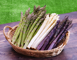 【有機JAS認証】『アスパラガス(グリーン 300g・ホワイト 400g・紫300g)ML混合』北海道産 ※冷蔵
