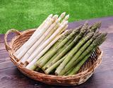 【有機JAS認証】『ホワイト(3L)/グリーン(2L)アスパラセット各500g』北海道産 ※冷蔵