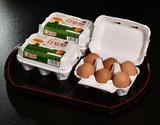 田子たまご村 放し飼い「有精卵」 6個×3(計18個)