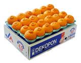 熊本県産『特別貯蔵デコポン』 糖度13度以上 約5kg(15〜24玉)