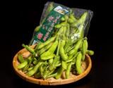 千葉県野田産「枝豆」 品種:ふくだるま、とよふさ 等 約300g×2袋 JAちば東葛  ※冷蔵