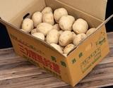 『三方原馬鈴薯(新じゃがいも・男爵)』静岡県浜松産 約10kg(M〜L)JAとぴあ浜松 ※常温