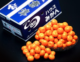 JAからつ『超小玉みかん』佐賀県産 4Sサイズ 約1.2kg×2箱 ※常温