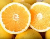 『ジャクソンフルーツ』南アフリカ産 約5kg(約20〜30玉)