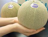 『庄内メロン(青肉)』山形県産 約5kg(3〜4玉)