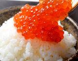 いくら醤油漬け ロシア産鱒子使用 青森加工 1パック 大盛 500g×2パック ※冷凍