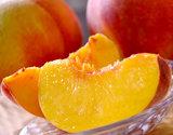 【朝日マリオン】高嶋さんグループの『紅い黄桃(無袋)』約2kg(5〜10玉)山形県産