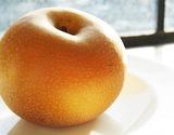 『しろいの梨(あきづき)』千葉県白井市産 1箱 約2.5kg(6〜9玉)