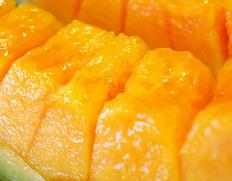 豊洲市場開場1周年記念!『秋の高級果物3種福袋』