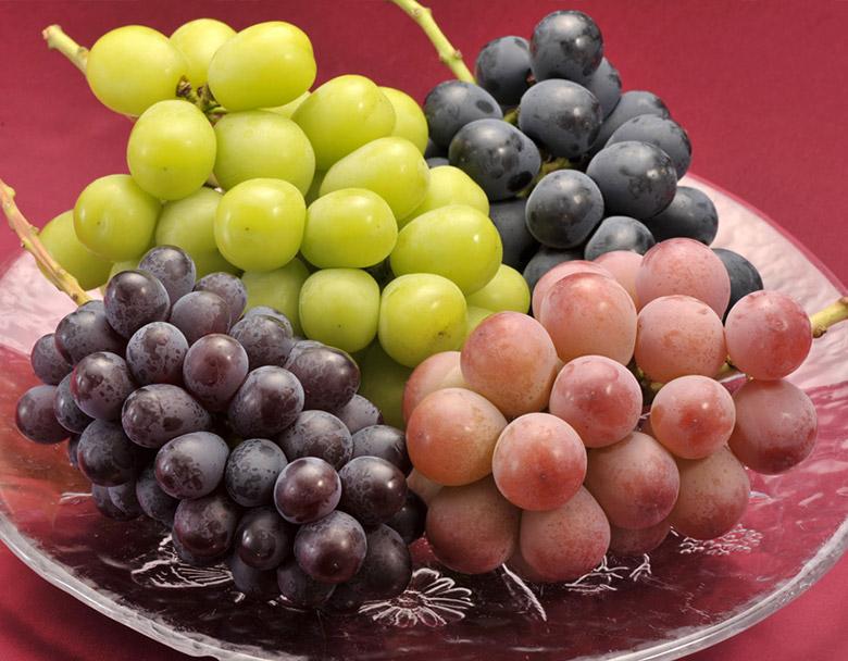 どれも大房!色とりどりのブドウ
