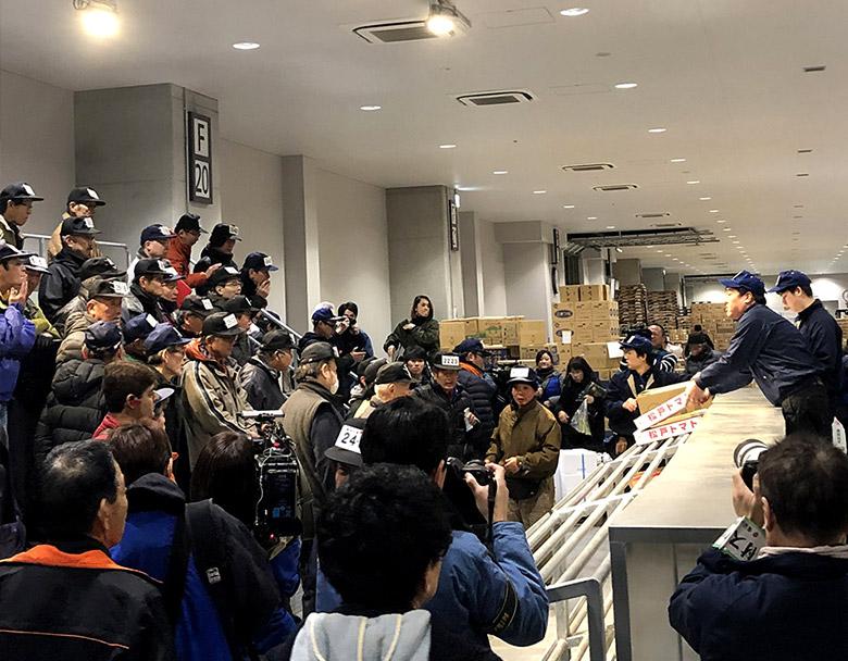豊洲市場青果棟1階で行われる競り